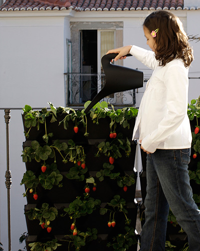 minigarden-watering